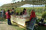 2007 Mattersburg :: Die Bretteljause war ein Gedicht!